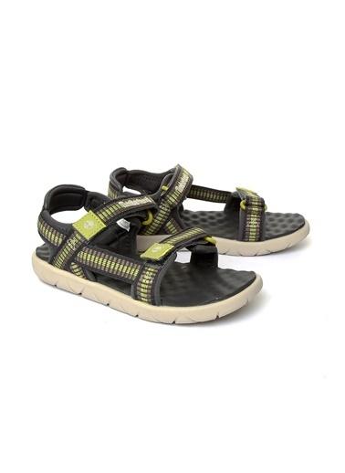 Timberland Ayakkabı Renkli